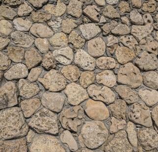 אבן ציפחה  (12)