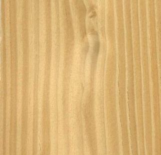 טקסטורה עץ