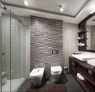 מקלחון בתוך חדר אמבטיה