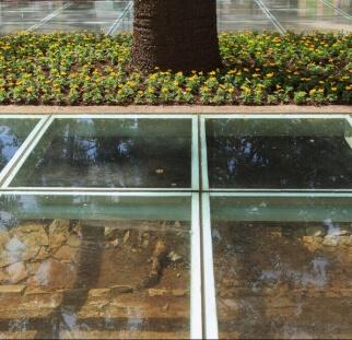 ריצפת זכוכית  (4)