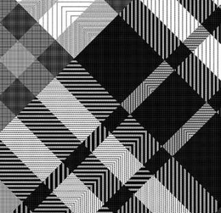פאטר שחור לבן